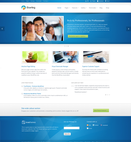 professional-business-theme