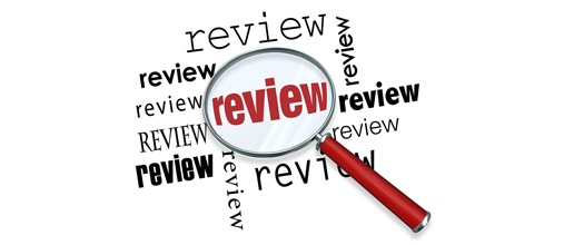 internet article review